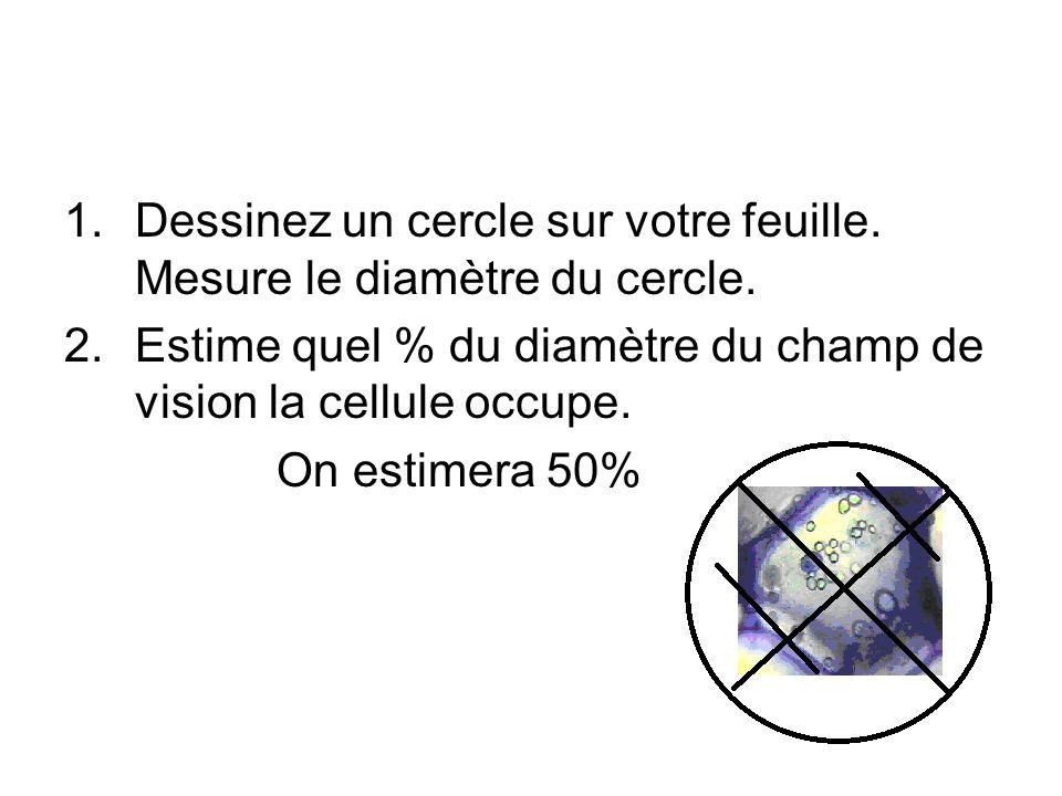 1.Dessinez un cercle sur votre feuille. Mesure le diamètre du cercle. 2.Estime quel % du diamètre du champ de vision la cellule occupe. On estimera 50