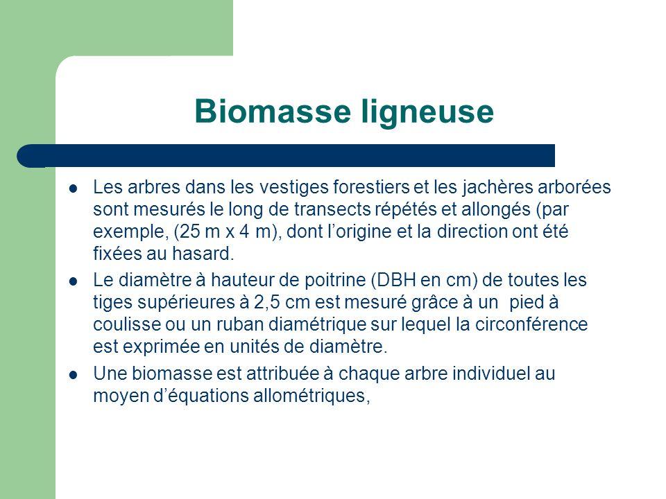 Biomasse ligneuse Les arbres dans les vestiges forestiers et les jachères arborées sont mesurés le long de transects répétés et allongés (par exemple, (25 m x 4 m), dont lorigine et la direction ont été fixées au hasard.