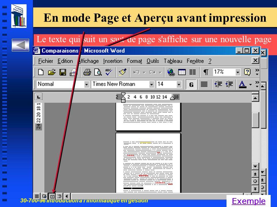 30-700-96 Introduction à linformatique en gestion 46 En mode Page et Aperçu avant impression Le texte qui suit un saut de page s affiche sur une nouvelle page Exemple