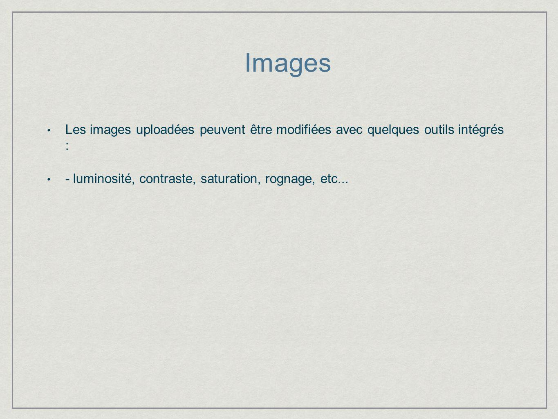 Images Les images uploadées peuvent être modifiées avec quelques outils intégrés : - luminosité, contraste, saturation, rognage, etc...