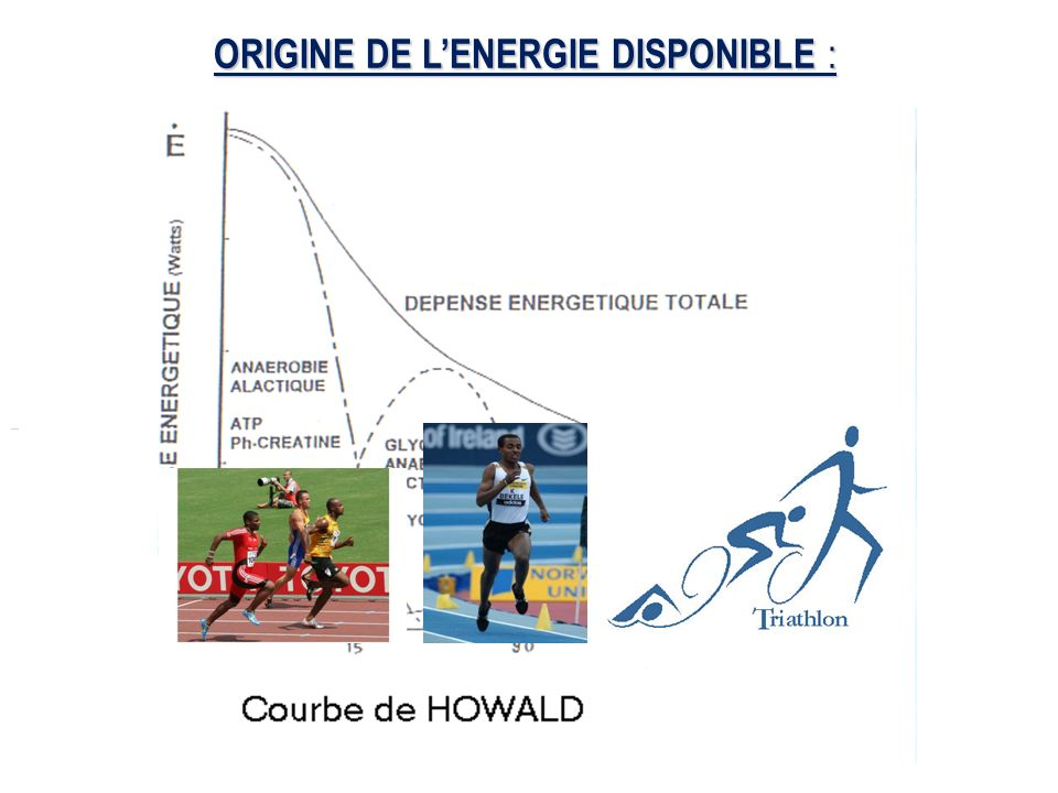 ORIGINE DE LENERGIE DISPONIBLE :