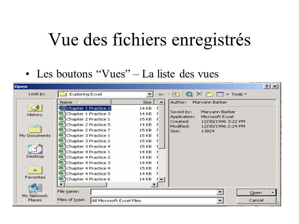 Vue des fichiers enregistrés Les boutons Vues – La liste des vues