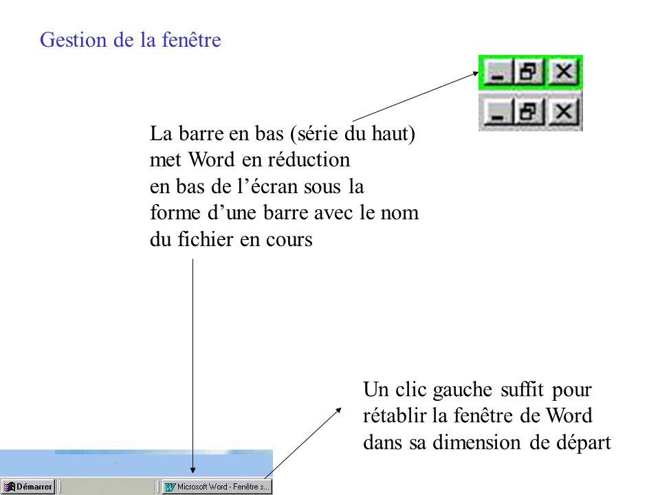 Gestion de la fenêtre 6 petites icônes Série du haut Série du bas Logiciel Word Fichier en cours