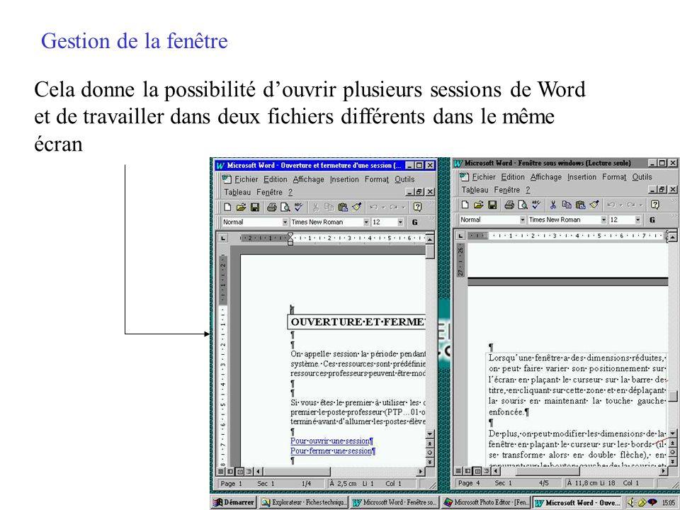 Gestion de la fenêtre La double fenêtre (série du haut) permet de donner des dimensions plus réduites à la fenêtre du logiciel Word