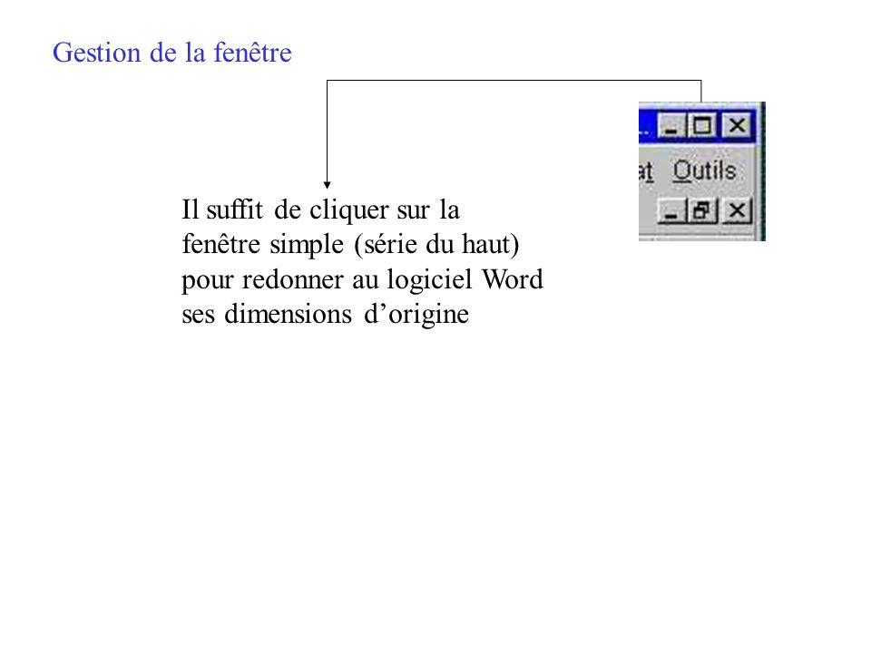 Gestion de la fenêtre Cela donne la possibilité douvrir plusieurs sessions de Word et de travailler dans deux fichiers différents dans le même écran