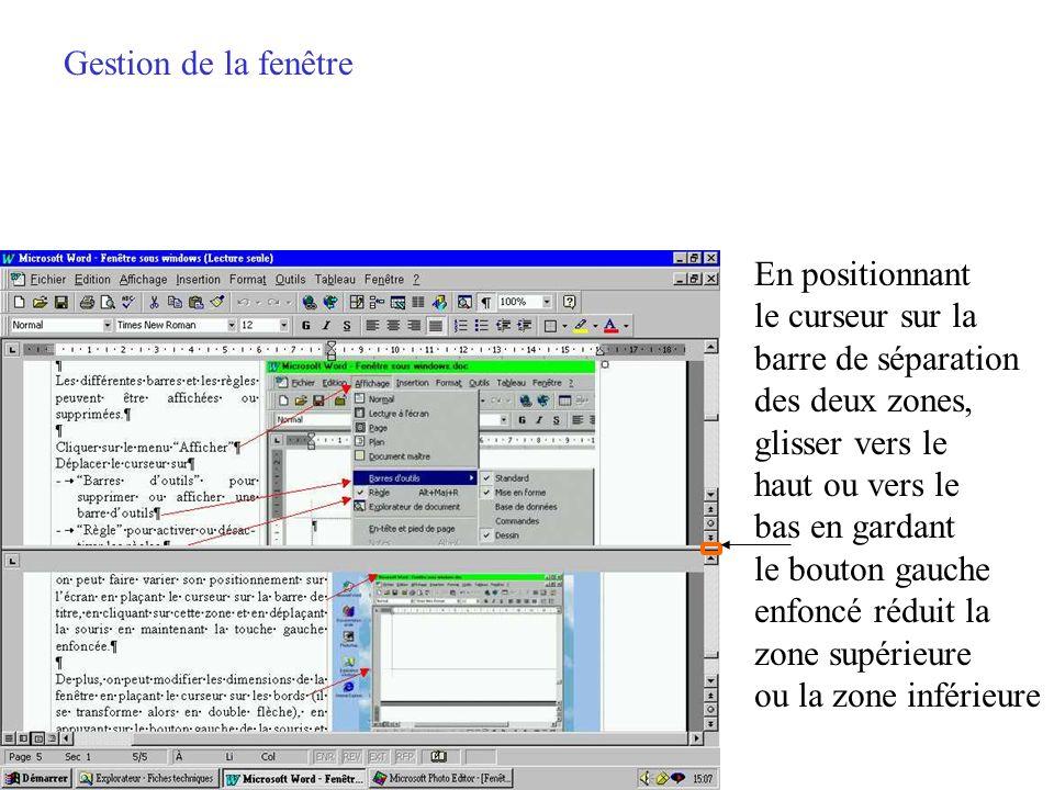 Gestion de la fenêtre Un seul fichier, deux zones de travail Barre de défilement vertical Pages suivante ou précédente Barre de défilement vertical Pa