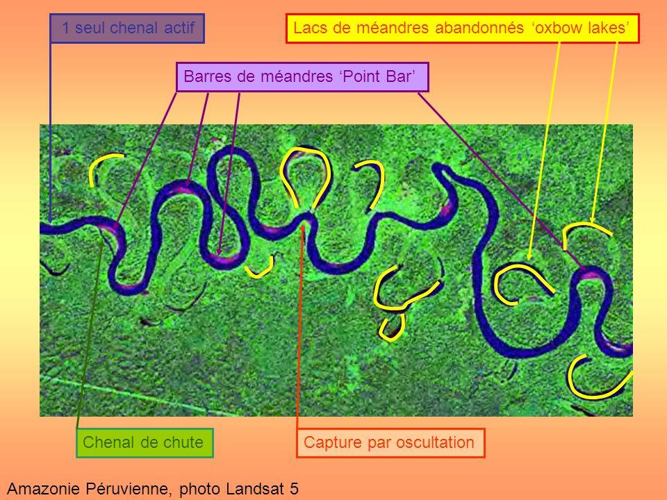 1 seul chenal actifBarres de méandres Point BarLacs de méandres abandonnés oxbow lakes Chenal de chute Capture par oscultation Amazonie Péruvienne, ph