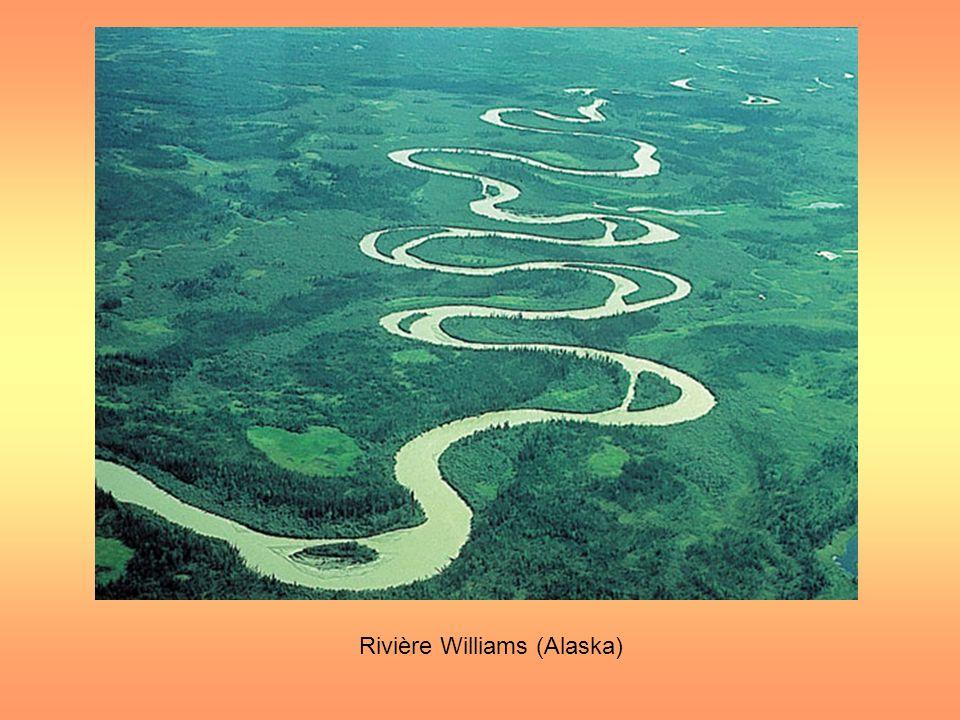 Rivière Williams (Alaska)