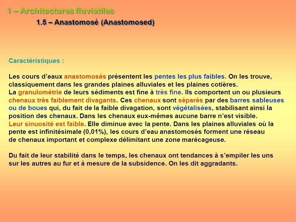 1 – Architectures fluviatiles 1.5 – Anastomosé (Anastomosed) 1 – Architectures fluviatiles 1.5 – Anastomosé (Anastomosed) Caractéristiques : Les cours