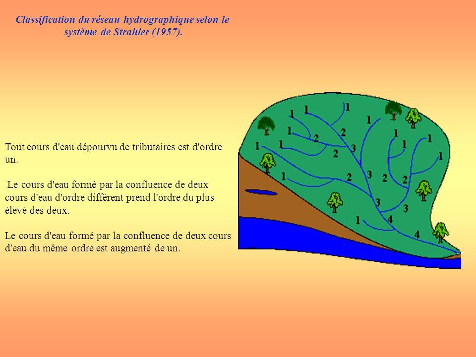 Classification du réseau hydrographique selon le système de Strahler (1957). Tout cours d'eau dépourvu de tributaires est d'ordre un. Le cours d'eau f