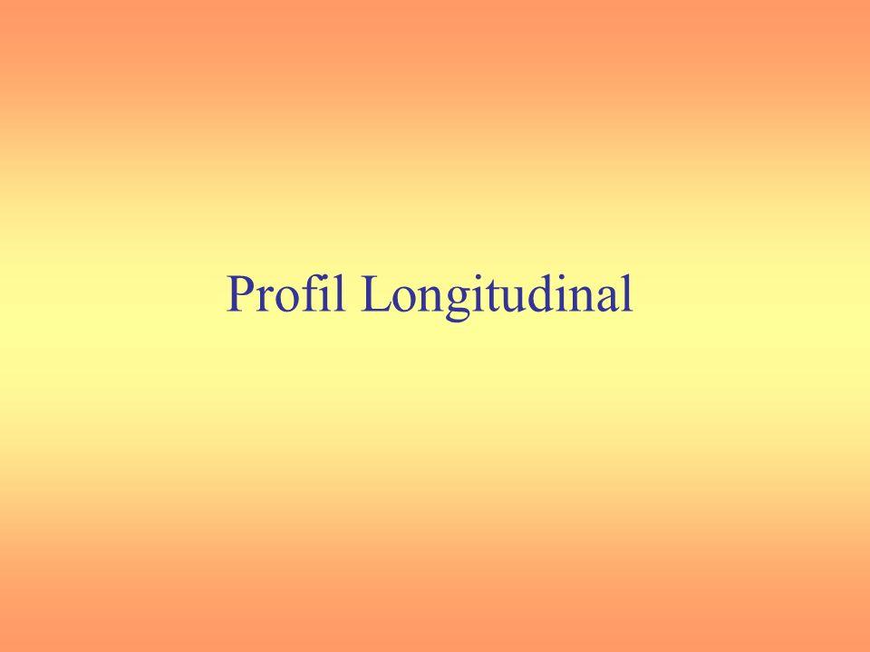 Profil Longitudinal