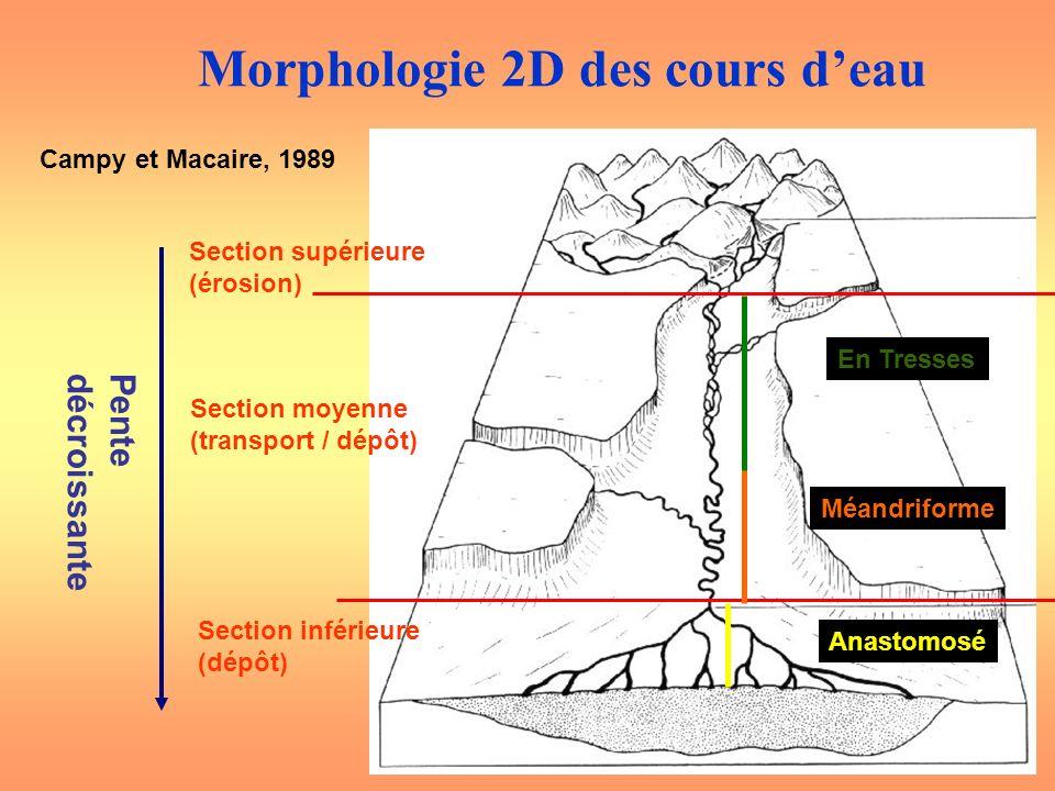 Campy et Macaire, 1989 Section supérieure (érosion) Section moyenne (transport / dépôt) Section inférieure (dépôt) Pentedécroissante En Tresses Méandr