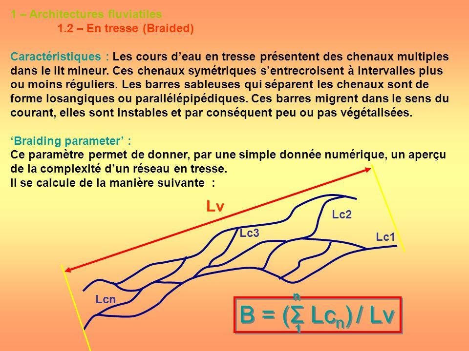 1 – Architectures fluviatiles 1.2 – En tresse (Braided) Caractéristiques : Les cours deau en tresse présentent des chenaux multiples dans le lit mineu