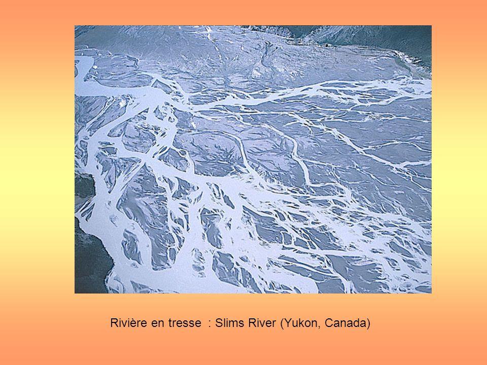Rivière en tresse : Slims River (Yukon, Canada)
