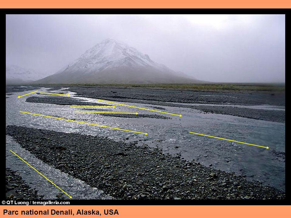 Parc national Denali, Alaska, USA