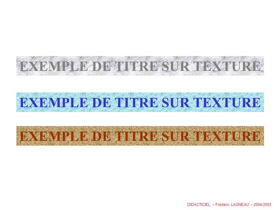 EXEMPLE DE TITRE SUR TEXTURE DIDACTICIEL – Frédéric LAGNEAU – 2004/2005