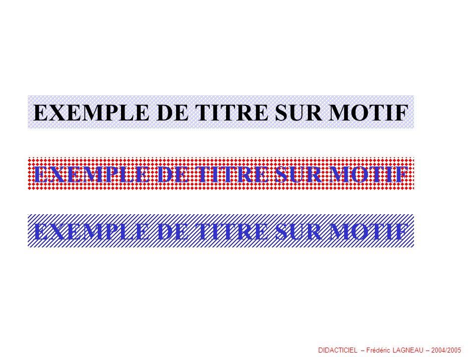 EXEMPLE DE TITRE SUR MOTIF DIDACTICIEL – Frédéric LAGNEAU – 2004/2005