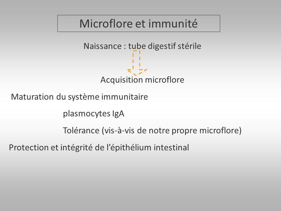 Microflore et immunité Naissance : tube digestif stérile Acquisition microflore Maturation du système immunitaire plasmocytes IgA Tolérance (vis-à-vis