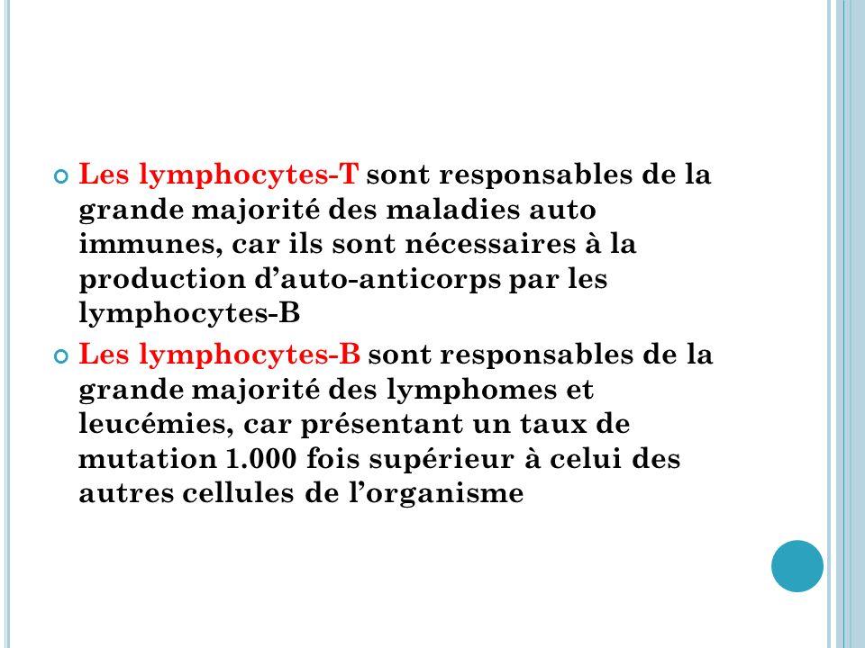 C AUSES DES MALADIES AUTO IMMUNES Facteurs de prédisposition génétique système HLA, anomalies du système du complément, anomalies du thymus, etc….