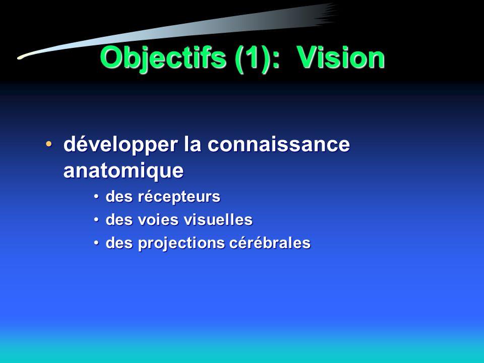 Objectifs (1): Vision développer la connaissance anatomiquedévelopper la connaissance anatomique des récepteursdes récepteurs des voies visuellesdes voies visuelles des projections cérébralesdes projections cérébrales