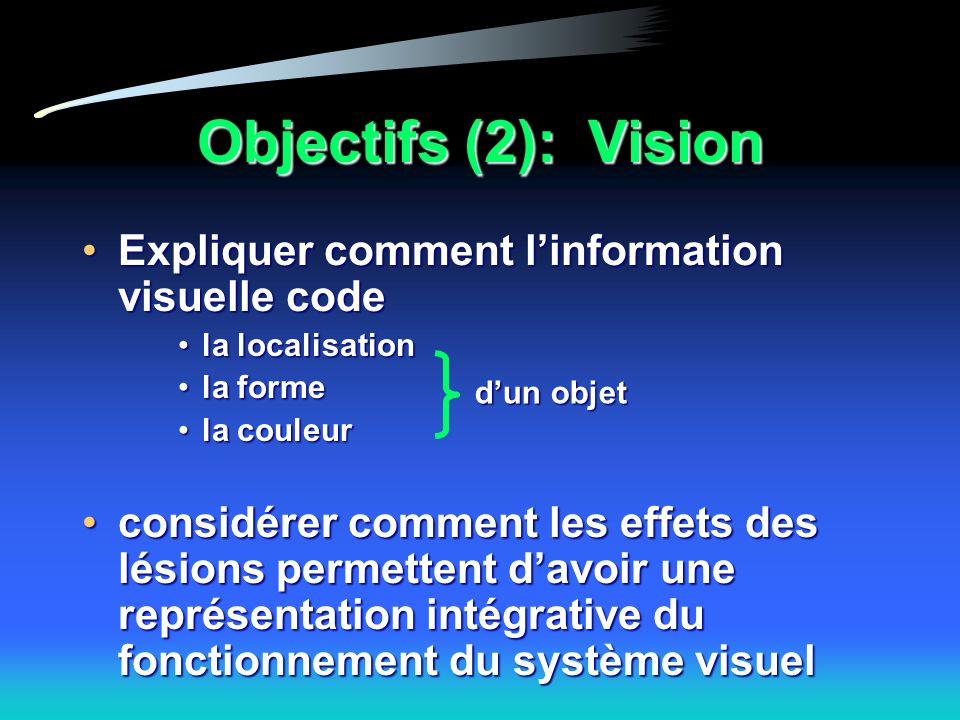 Objectifs (2): Vision Expliquer comment linformation visuelle codeExpliquer comment linformation visuelle code la localisationla localisation la formela forme la couleurla couleur considérer comment les effets des lésions permettent davoir une représentation intégrative du fonctionnement du système visuelconsidérer comment les effets des lésions permettent davoir une représentation intégrative du fonctionnement du système visuel dun objet