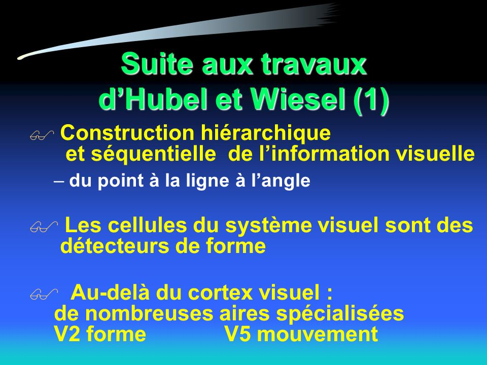 Suite aux travaux dHubel et Wiesel (1) Construction hiérarchique et séquentielle de linformation visuelle –du point à la ligne à langle Les cellules du système visuel sont des détecteurs de forme Au-delà du cortex visuel : de nombreuses aires spécialisées V2 formeV5 mouvement