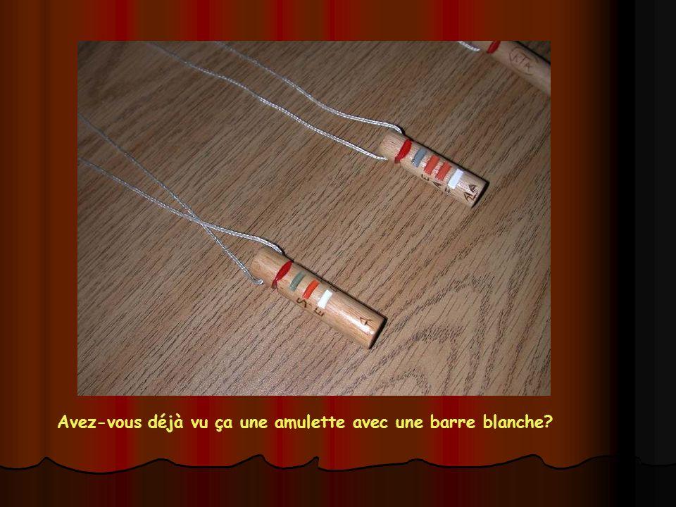 Remise des amulettes aux braves qui ont fait la Piste d'hiver Vendredi 7 Avril 2006 Cliquer Sainte Justine