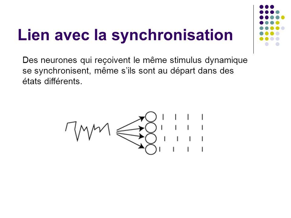 Lien avec la synchronisation Des neurones qui reçoivent le même stimulus dynamique se synchronisent, même sils sont au départ dans des états différents.