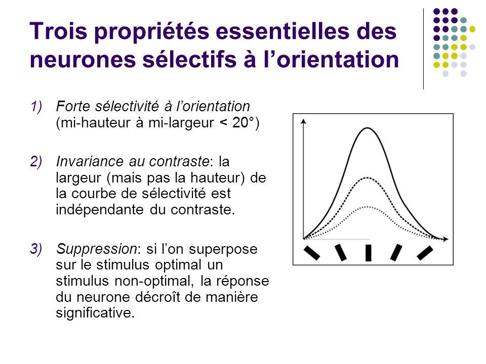Trois propriétés essentielles des neurones sélectifs à lorientation 1)Forte sélectivité à lorientation (mi-hauteur à mi-largeur < 20°) 2)Invariance au contraste: la largeur (mais pas la hauteur) de la courbe de sélectivité est indépendante du contraste.