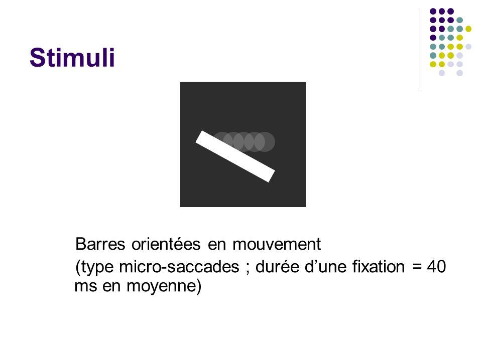 Stimuli Barres orientées en mouvement (type micro-saccades ; durée dune fixation = 40 ms en moyenne)