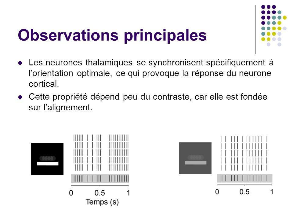 Observations principales Les neurones thalamiques se synchronisent spécifiquement à lorientation optimale, ce qui provoque la réponse du neurone cortical.