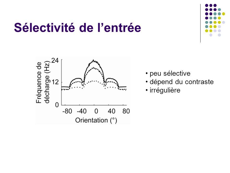 Sélectivité de lentrée peu sélective dépend du contraste irrégulière