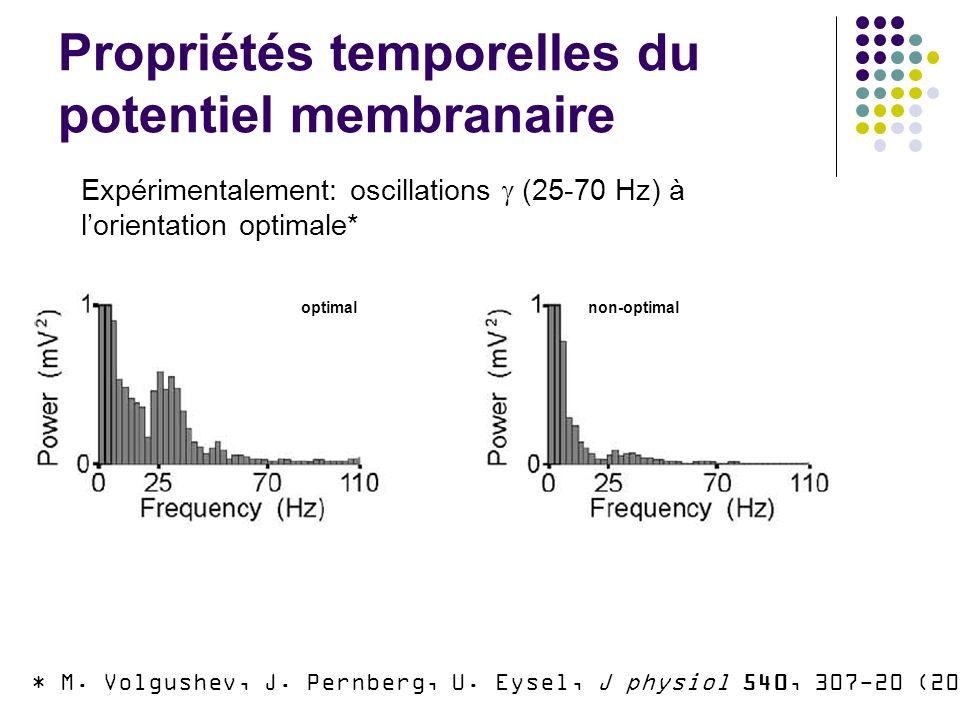 Propriétés temporelles du potentiel membranaire * M.