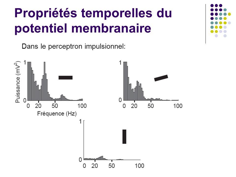 Propriétés temporelles du potentiel membranaire Dans le perceptron impulsionnel: