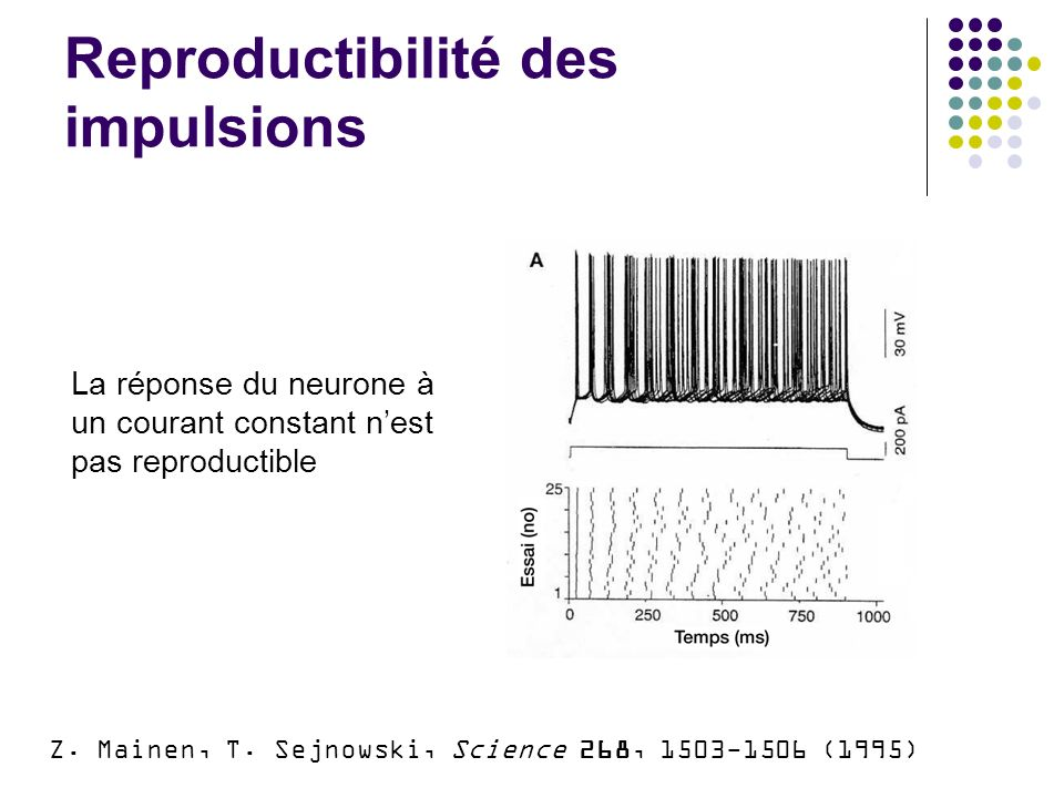 Discussion: apprentissage impulsionnel R.Kempter, W.