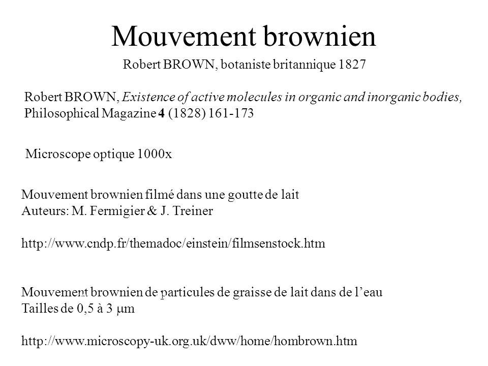 Mouvement brownien Mouvement brownien de particules de graisse de lait dans de leau Tailles de 0,5 à 3 m http://www.microscopy-uk.org.uk/dww/home/homb