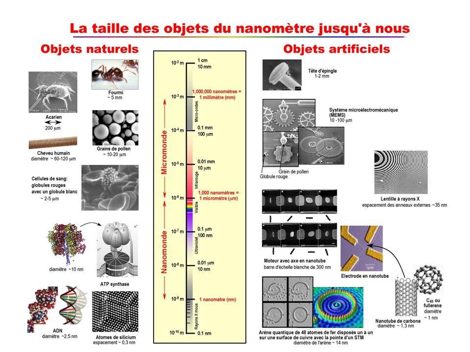 STRUCTURES A TOUTES LES ECHELLES aussi dans le monde inorganique: chimie: fullerènes (C 60, C 70,…), nanotubes amas atomiques ou moléculaires sciences des surfaces: agrégats nanométriques minéralogie: matériaux nanostructurés, filaments (chrysotile) VUE TRADITIONNELLE: monde macroscopique: mètre = nous systèmes de 6 10 23 molécules (gaz, liquides, solides) monde microscopique: 10 -10 mètre = 0.1 nm (atomes, molécules) NOUVELLE VISION DES NANOSCIENCES & DE LA BIOLOGIE MOLECULAIRE hiérarchies de structures depuis léchelle du nanomètre organismes pluricellulaires >100 m cellules (procaryotes, eucaryotes) 10-100 m organelles (mitochondries, chloroplastes) 1-10 m virus 0.1 m structures supramoleculaires (moteurs moleculaires,…) 10-100 nm macromolécules (ADN, ARN, protéines) 1-10 nm petites molécules 0.1-1 nm atomes 0.1 nm