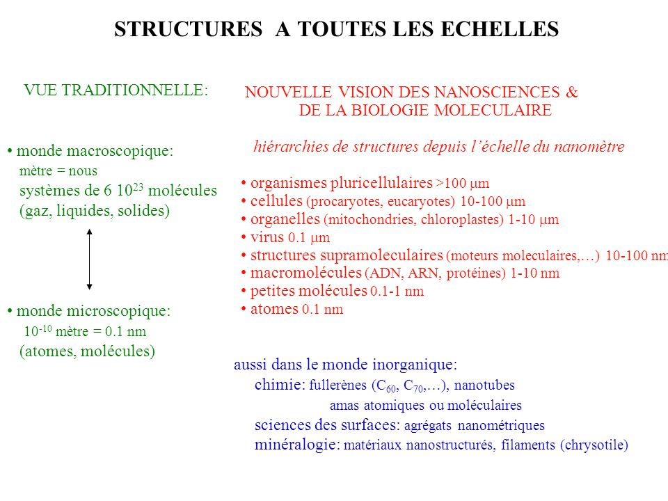 LARBRE DES MOLECULES A SES RACINES AU NANOMETRE benzène C 6 H 6 octane C 8 H 18 fullerène C 60 (1985) chlorophylle (140 atomes) (1920) C 55 H 74 N 4 O 6 Mg isomerase (988 atomes) (50s) (1860) nanotubes de carbone (1991) protéines ADN (1953) F o F 1 -ATPase (10 nm) (90s)ribosome = protéines + ARN (20 nm) (2005)