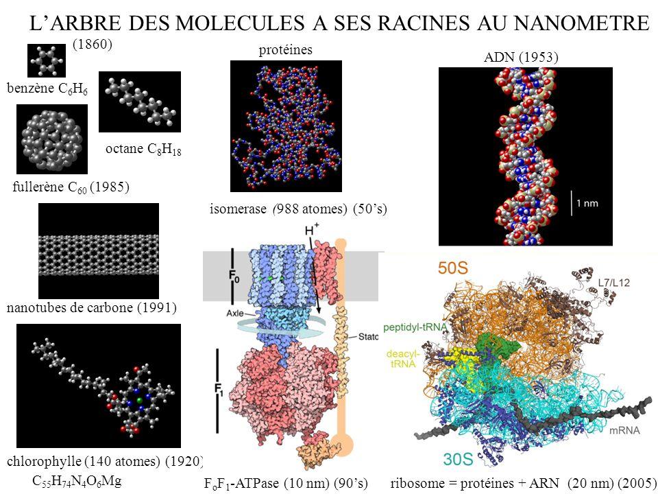 MOLECULES benzène C 6 H 6 octane C 8 H 18 fullerène C 60 carotène (92 atomes) C 40 H 52 guanosine triphosphate C 10 H 12 N 5 O 14 P 3 chlorophylle (140 atomes) C 55 H 74 N 4 O 6 Mg protéine isomérase (988 atomes) protéine hexokinase (1860) (1920) (1985) (1950)
