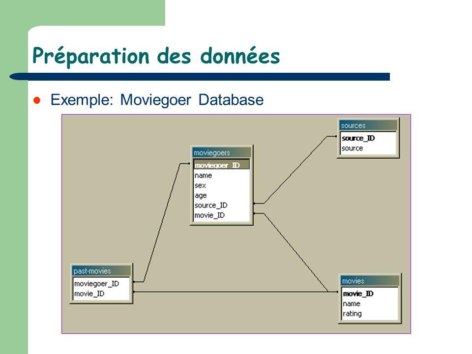 Préparation des données Exemple: Moviegoer Database