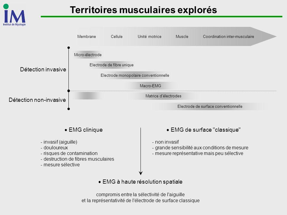 Territoires musculaires explorés MembraneCelluleUnité motriceMuscleCoordination inter-musculaire Micro-électrode Macro-EMG Electrode de surface conven