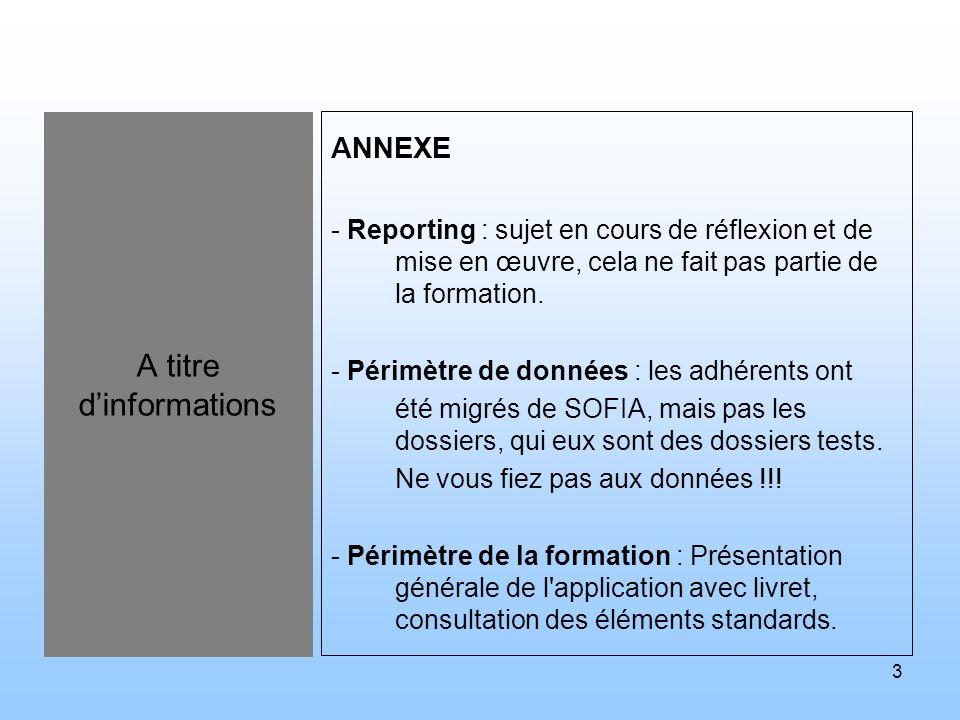 3 A titre dinformations ANNEXE - Reporting : sujet en cours de réflexion et de mise en œuvre, cela ne fait pas partie de la formation. - Périmètre de