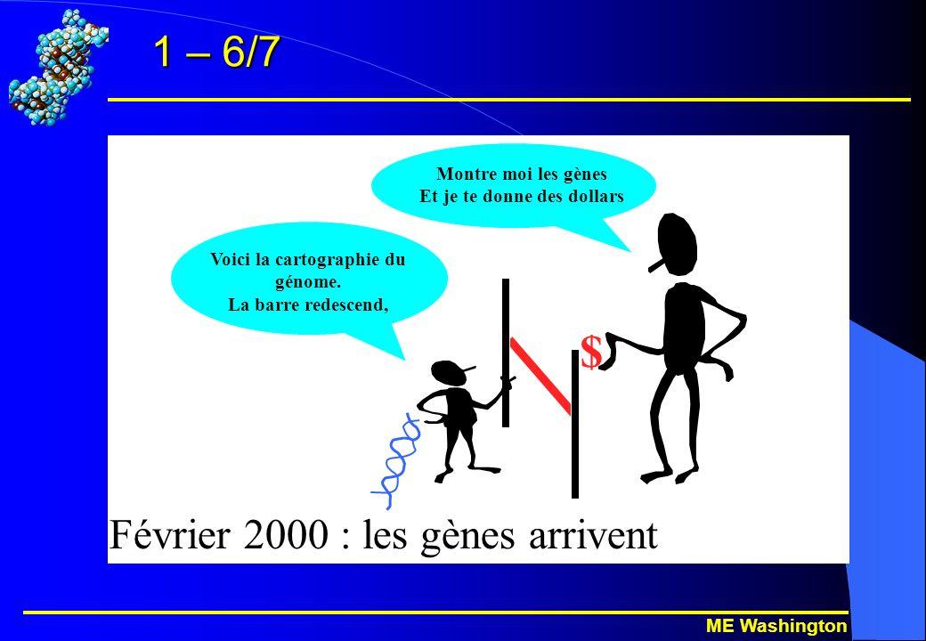 ME Washington 1 – 6/7 $ Février 2000 : les gènes arrivent Voici la cartographie du génome.