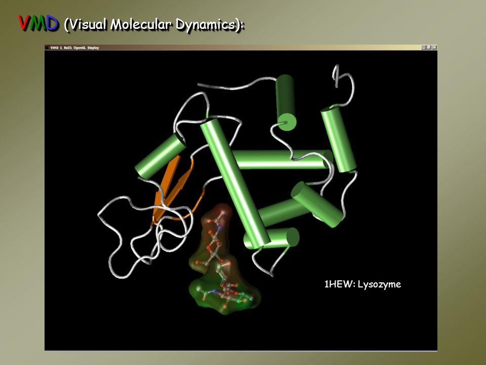 VMD (Visual Molecular Dynamics): 1HEW: Lysozyme