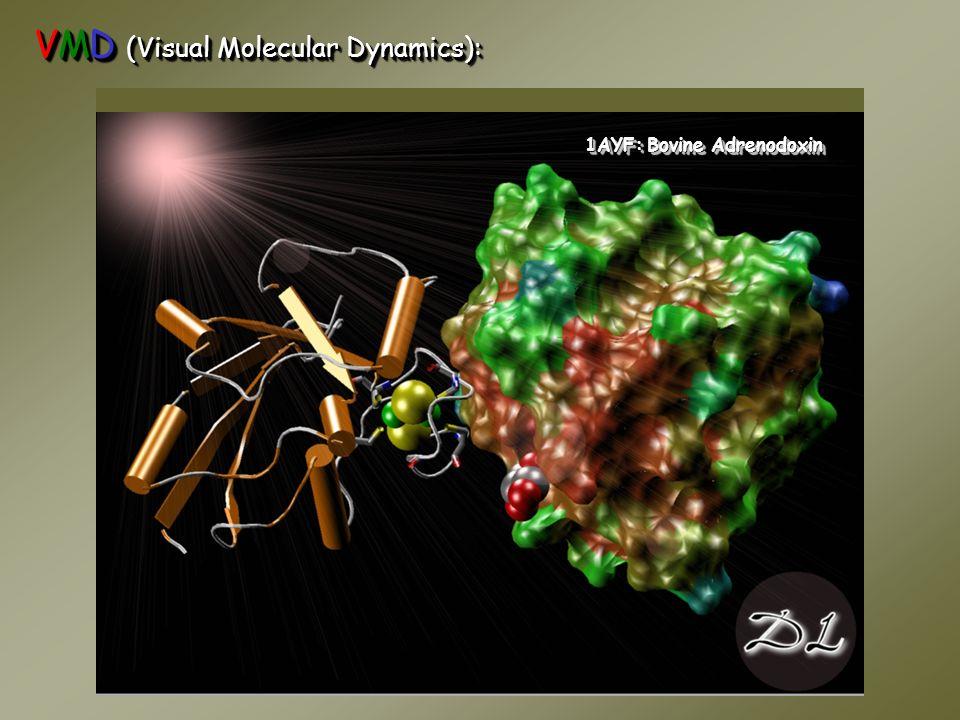 VMD (Visual Molecular Dynamics): 1AYF: Bovine Adrenodoxin
