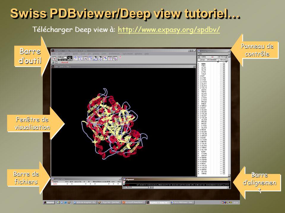 Swiss PDBviewer/Deep view tutoriel… Télécharger Deep view à: http://www.expasy.org/spdbv/http://www.expasy.org/spdbv/ Barre doutil Panneau de contrôle