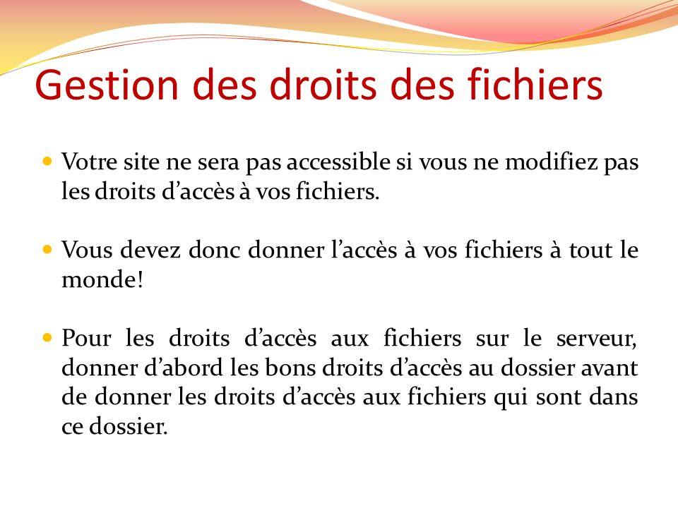 Gestion des droits des fichiers Votre site ne sera pas accessible si vous ne modifiez pas les droits daccès à vos fichiers.