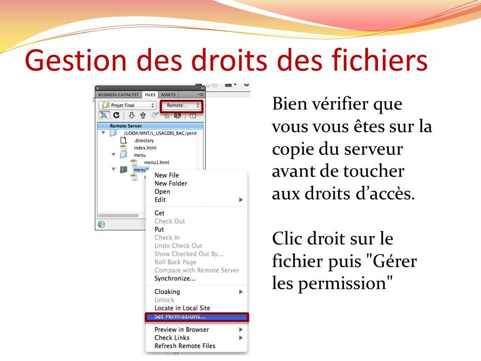 Gestion des droits des fichiers Bien vérifier que vous vous êtes sur la copie du serveur avant de toucher aux droits daccès.