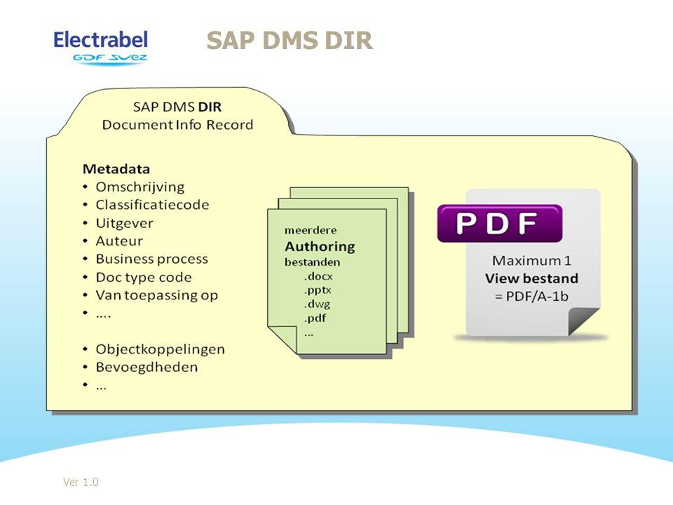 SAP DMS DIR Ver 1.0