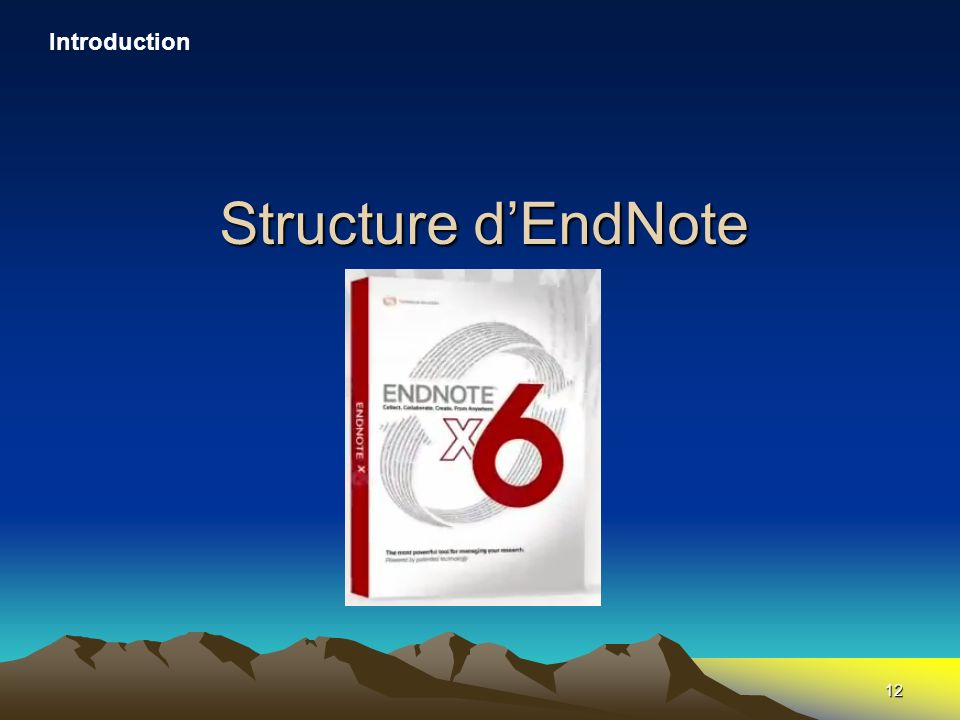 12 Structure dEndNote Introduction